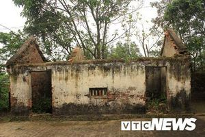 Ngôi nhà bí ẩn ở Thái Bình: Chuột khổng lồ xuất hiện, cả xóm bỏ chạy, thi nhau bất tỉnh