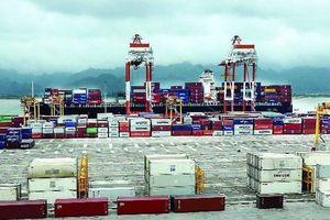Phê duyệt chủ trương đầu tư thêm hai bến container tại cảng Hải Phòng