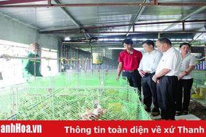 Chính sách kích cầu - 'bà đỡ' cho phát triển sản xuất nông nghiệp ở Yên Định