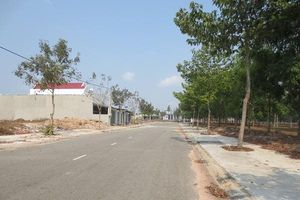 Tỉnh ủy Bình Phước yêu cầu xử lý nghiêm việc lừa dối bán đất