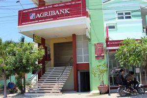 Khánh Hòa: Bắt nguyên giám đốc phòng giao dịch ngân hàng