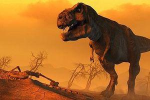 Tái hiện sự kiện khủng long bị xóa sổ trên Trái Đất