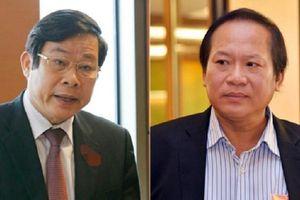 Khai trừ Đảng với ông Trương Minh Tuấn, Nguyễn Bắc Son