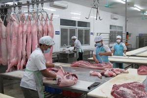 Nguồn cung giảm, lợn hơi liên tục tăng mạnh