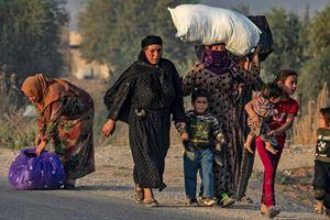 Nghị sỹ Mỹ kêu gọi trừng phạt Thổ Nhĩ Kỳ vì 'Chiến dịch hòa bình mùa xuân'