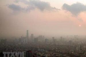 Nhiều thành phố lớn đưa ra các sáng kiến cải thiện chất lượng không khí