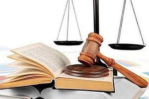 Đề xuất sửa đổi, bổ sung Luật xử lý vi phạm hành chính