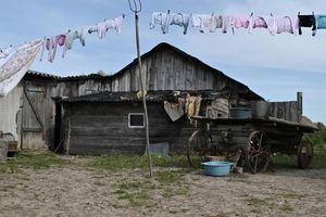 Ngôi làng hẻo lánh ở Nga chỉ có 1 học sinh duy nhất