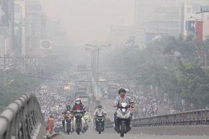 Báo cáo môi trường Hà Nội 2019 sử dụng số liệu 2005: Bộ Tư pháp lên tiếng