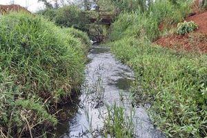 Đắk Nông: Công ty TNHH Hồng Đức xả nước thải đen ngòm ra môi trường