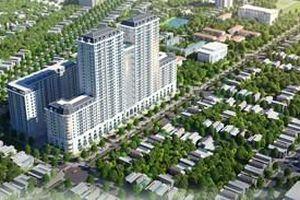 Dự án của BID Group tại Thái Bình có nhiều vi phạm
