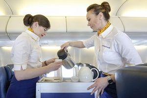 Đừng bao giờ uống nước trên máy bay, và loạt sự thật đáng sợ đằng sau do chính tiếp viên hàng không tiết lộ