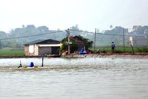 Gia Viễn: Chuyển đổi đất lúa kém hiệu quả sang nuôi trồng thủy sản