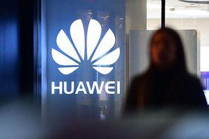Huawei sắp được cứu