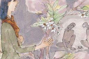 Cây bưởi nở hoa