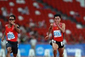 Thành lập đoàn thể thao Việt Nam dự SEA Games lần thứ 30