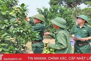 Nhờ BĐBP Hà Tĩnh, người dân vùng biên 'đoạn tuyệt' vào rừng săn bắt, lấy gỗ