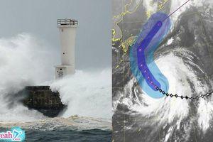 Tàu chở hàng nặng 2000 tấn chìm vì bão Nhật Bản, 2 thủy thủ Việt Nam gặp nạn chưa rõ tung tích
