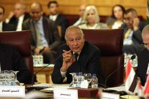 Liên đoàn Ả-rập họp khẩn, lên án 'hành động xâm lược' của Thổ Nhĩ Kỳ ở Syria