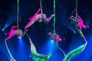 9 quốc gia tham dự Liên hoan Xiếc quốc tế 2019 tại Hà Nội