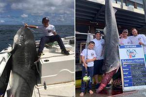 Cậu bé 8 tuổi bắt được cá mập nặng 314 kg ngoài khơi Australia