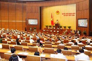Trình bày, tiếp thu một số dự án luật tại Phiên họp 38 UBTVQH