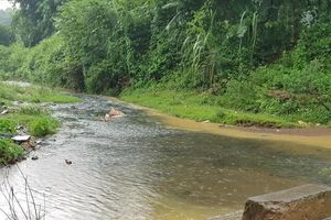Vụ nước ở Hà Nội có mùi lạ: Xe tải đổ trộm dầu nhớt gần nhà máy nước sông Đà