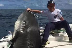 Cậu bé 8 tuổi bắt được con cá mập nặng hơn 300kg tại Australia