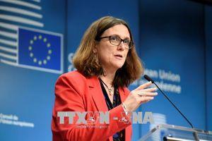 EU khẳng định nỗ lực ngăn chặn các biện pháp thuế quan của Mỹ
