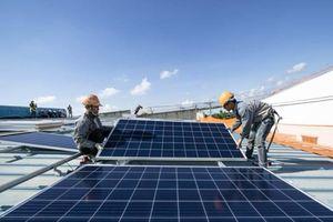 Nghịch lý điện mặt trời: gần 50% công suất bị 'đổ bỏ'