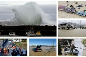 Bão Habigis tàn phá Nhật Bản: Hơn 200 người thương vong, 5.500 ngôi nhà chìm trong biển nước