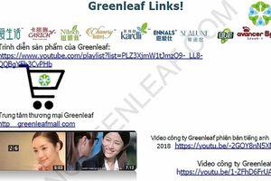Bộ Công Thương: Người dân không tham gia bán hàng đa cấp qua hệ thống Greenleafgroup.cn