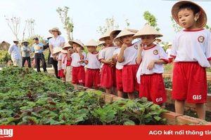 Nông trại Phan Nam ứng dụng nông nghiệp công nghệ cao
