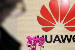 Choáng váng số lượng tấn công mạng mà 'trùm' công nghệ Huawei phải hứng chịu mỗi ngày