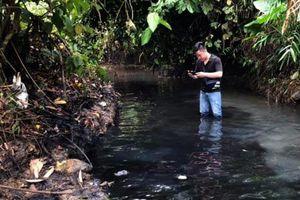 Lãnh đạo Công ty nước sạch sông Đà lên tiếng vụ nước nhiễm dầu