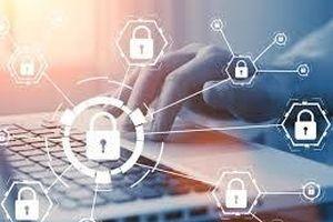 Đánh giá bảo mật website doanh nghiệp Việt miễn phí