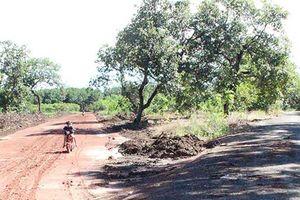 Bộ TN-MT chỉ đạo làm rõ thay đổi quy hoạch đường Phú Riềng đỏ