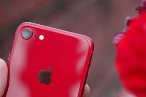 'Phù thủy' Ming-Chi Kuo đưa ra dự đoán về giá iPhone SE 2
