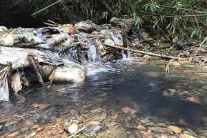 Công an Hòa Bình, Hà Nội vào cuộc vụ nước sạch Sông Đà bị nhiễm dầu