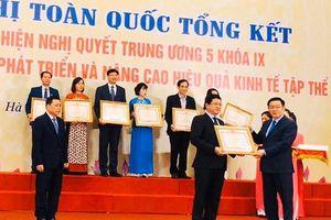 Sở KH&ĐT Đà Nẵng nhận Bằng khen của Thủ tướng về phát triển kinh tế tập thể
