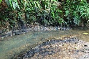Công ty CP đầu tư nước sạch sông Đà có thể bị truy cứu trách nhiệm hình sự?