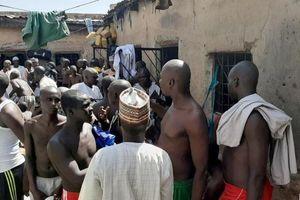 Nigeria giải cứu hàng chục người bị bạo hành trong trường Hồi giáo