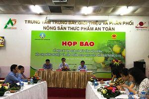 Lễ hội cây ăn quả có múi tỉnh Hòa Bình, Hội chợ nông nghiệp và sản phẩm OCOP khu vực phía Bắc năm 2019