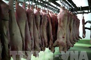 Trung Quốc: Lạm phát đi lên do giá thịt lợn tăng