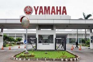 Honda Việt Nam, Yamaha Việt Nam nhảy vào thị trường cho thuê xe tự lái