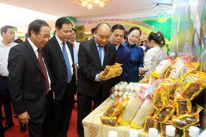 Thủ tướng Nguyễn Xuân Phúc: Xây dựng nông thôn mới là một cuộc cách mạng mang tính chiến lược