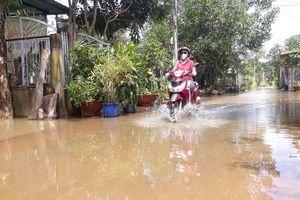 Bình Phước: Xóm 'nước nổi' giữa lòng thành phố Đồng Xoài