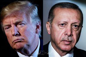 Thổ Nhĩ Kỳ có thể 'không tuyên bố ngừng bắn' ở Bắc Syria