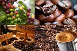 Đẩy mạnh xuất khẩu chè và cà phê sang Trung Quốc