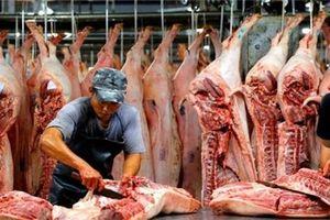 Phó Thủ tướng đề xuất tăng nhập khẩu thịt lợn để bình ổn giá